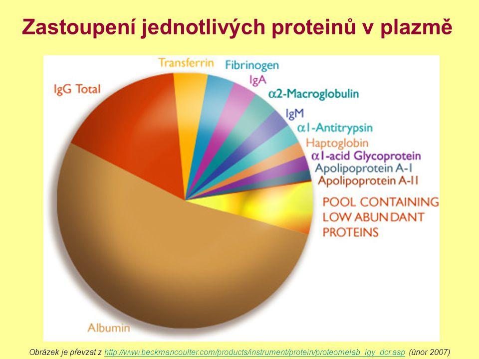 Zastoupení jednotlivých proteinů v plazmě