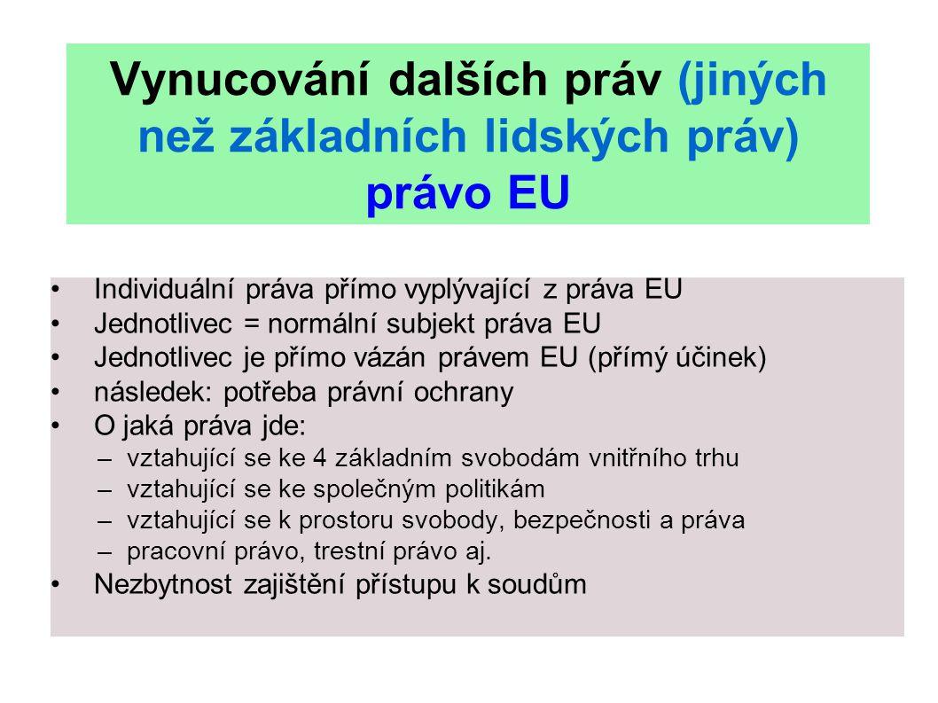Vynucování dalších práv (jiných než základních lidských práv) právo EU