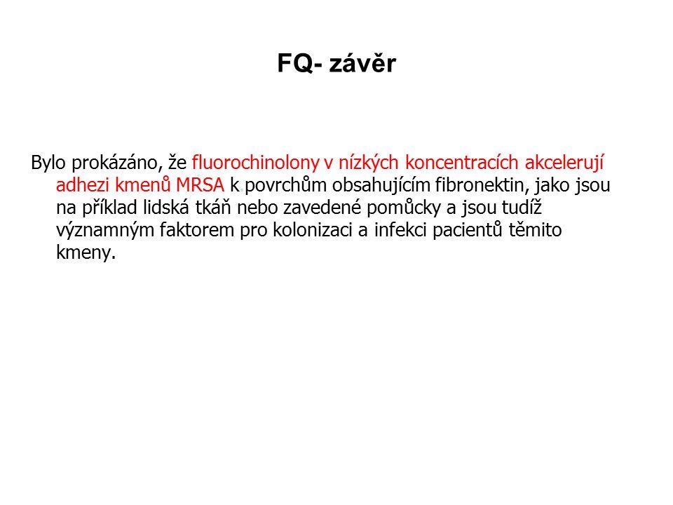 FQ- závěr