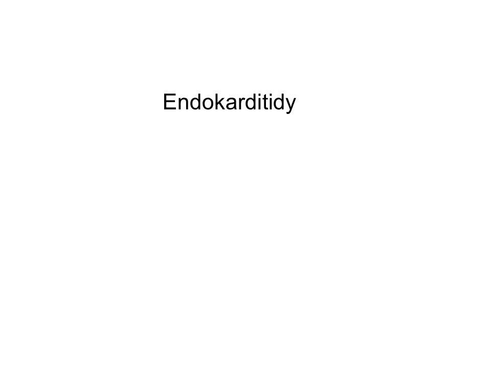 Endokarditidy