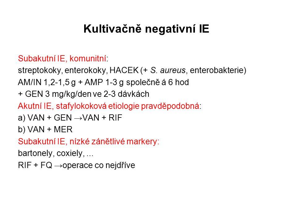 Kultivačně negativní IE