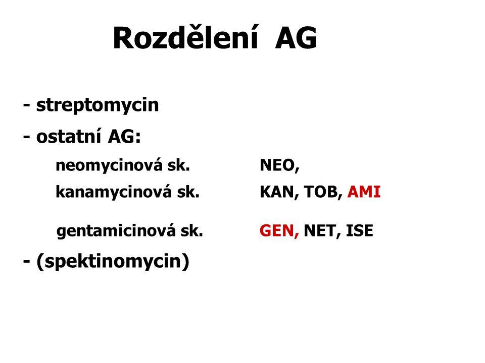 Rozdělení AG - streptomycin - ostatní AG: - (spektinomycin)