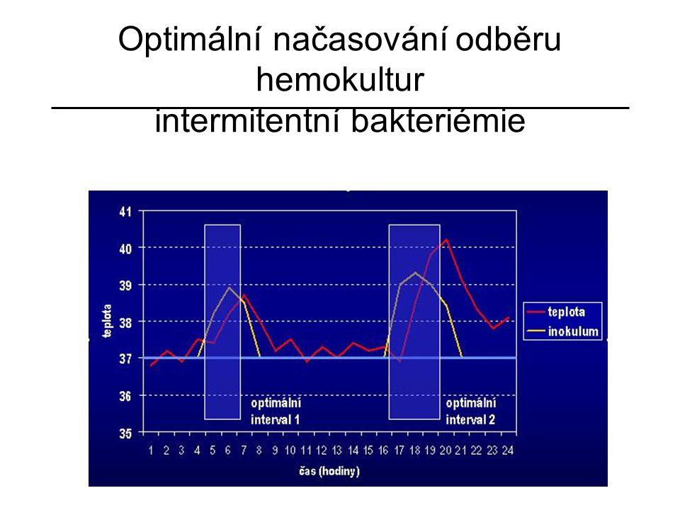 Optimální načasování odběru hemokultur intermitentní bakteriémie