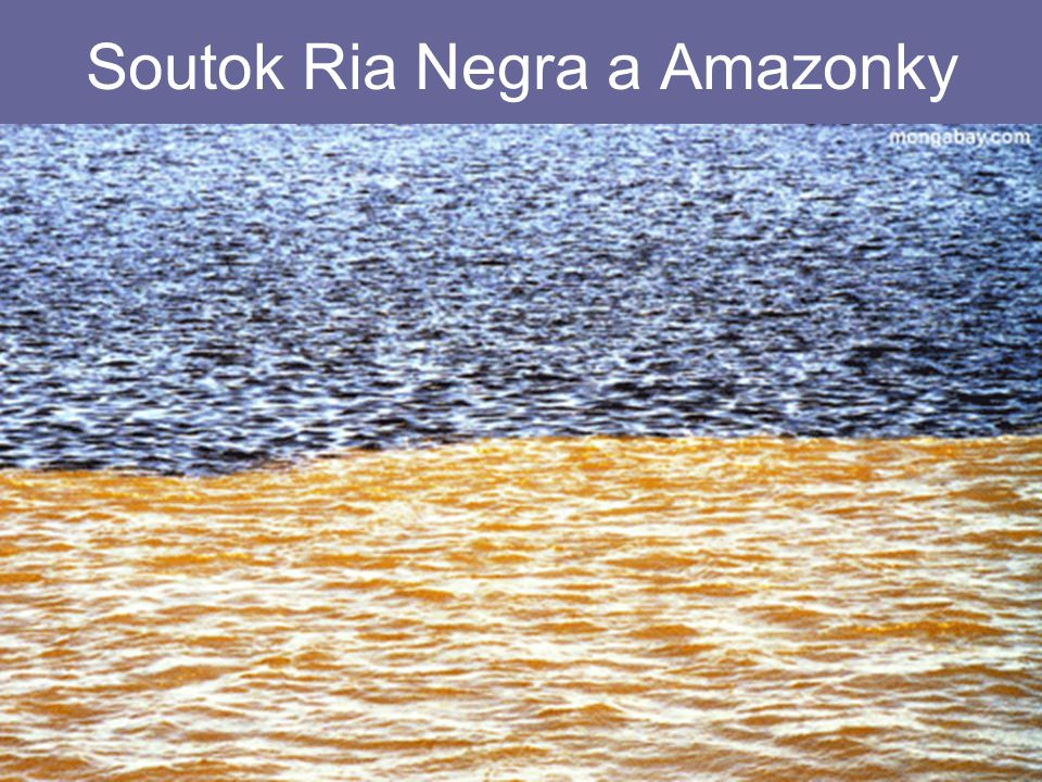 Soutok Ria Negra a Amazonky