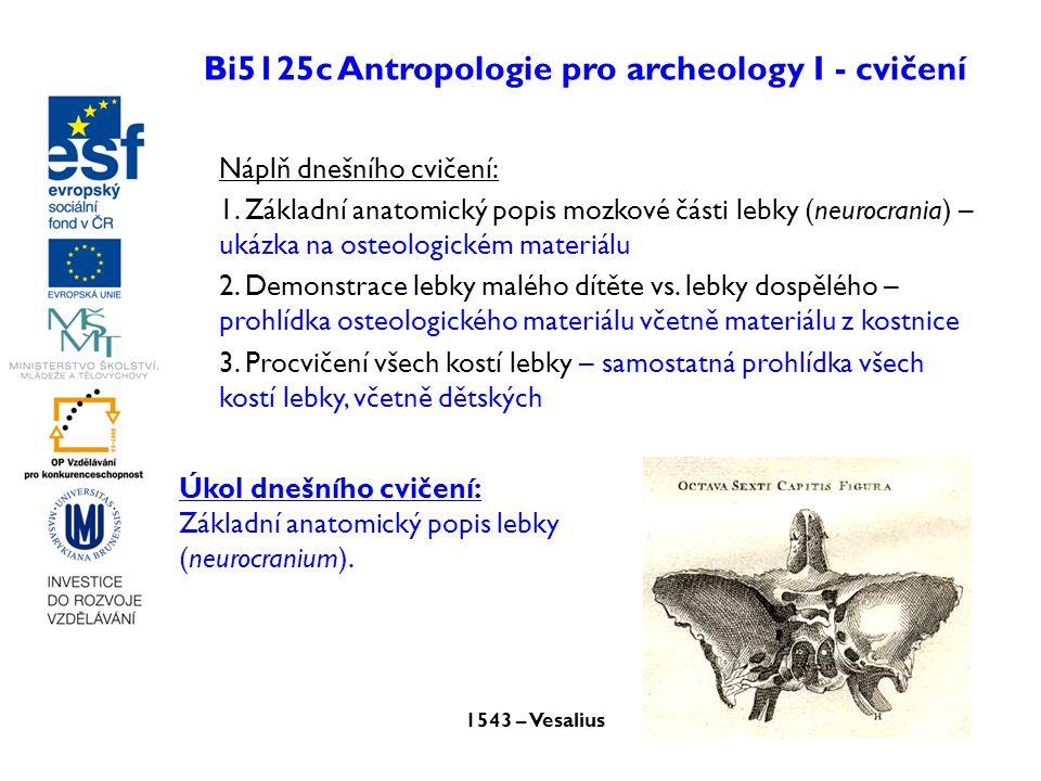 Bi5125c Antropologie pro archeology I - cvičení