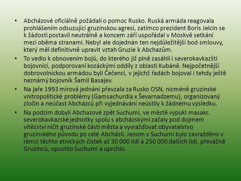 Abcházové oficiálně požádali o pomoc Rusko