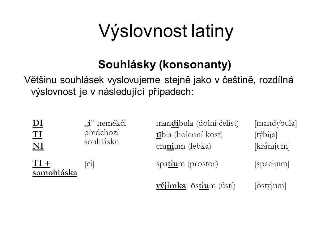 Souhlásky (konsonanty)