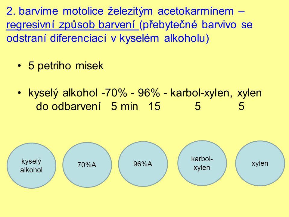 kyselý alkohol -70% - 96% - karbol-xylen, xylen