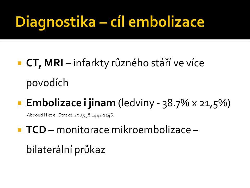 Diagnostika – cíl embolizace