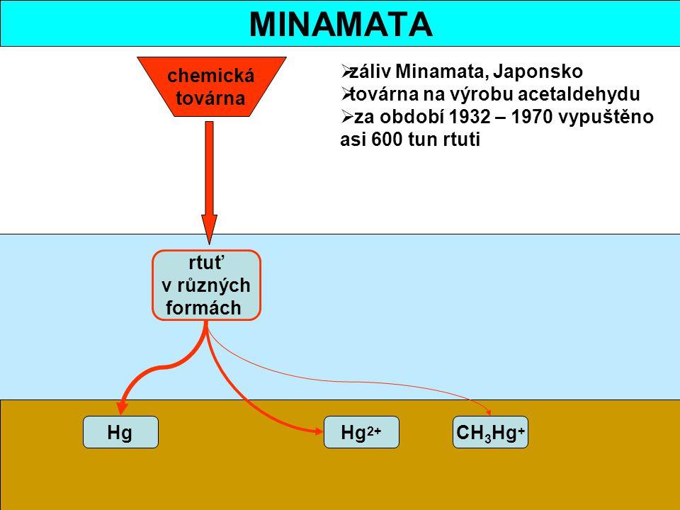 MINAMATA chemická továrna záliv Minamata, Japonsko