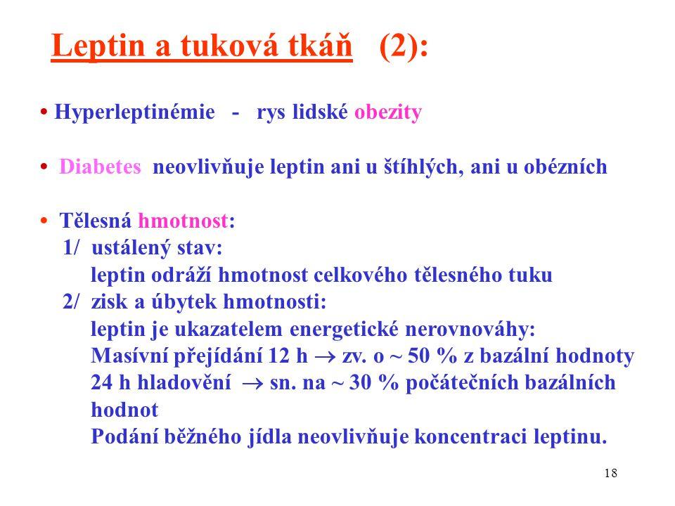 Leptin a tuková tkáň (2):