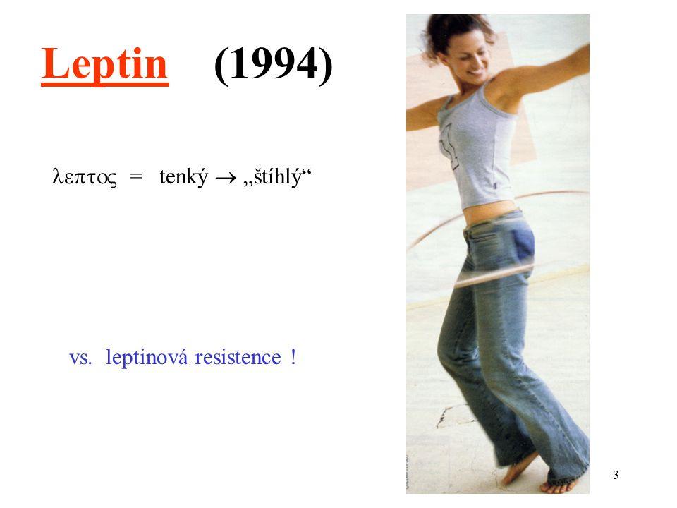 """Leptin (1994)  = tenký  """"štíhlý vs. leptinová resistence !"""