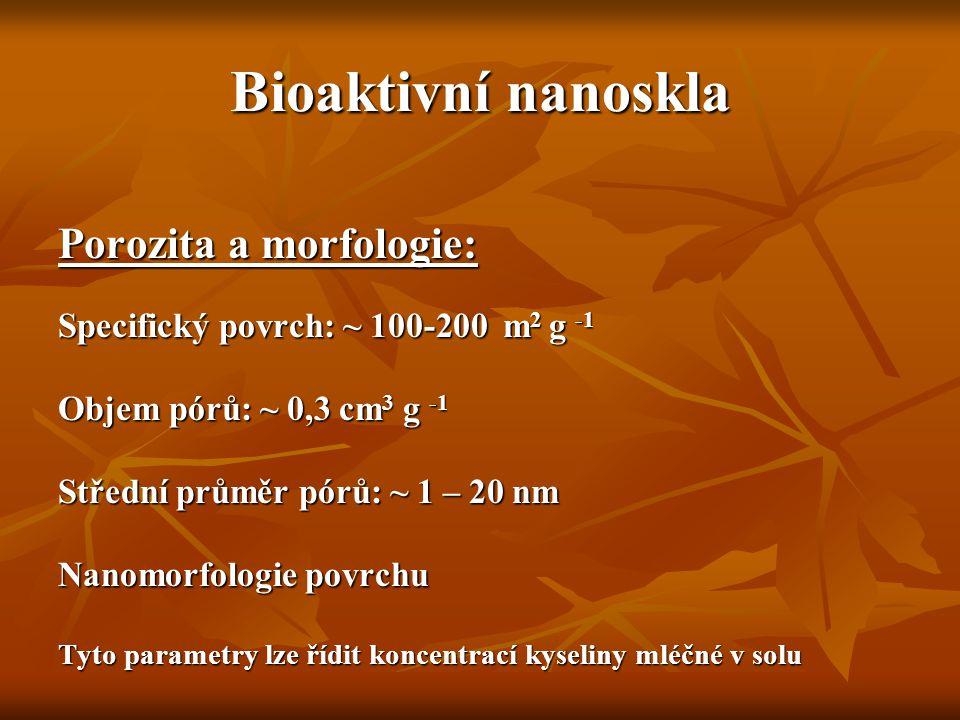 Bioaktivní nanoskla Porozita a morfologie: