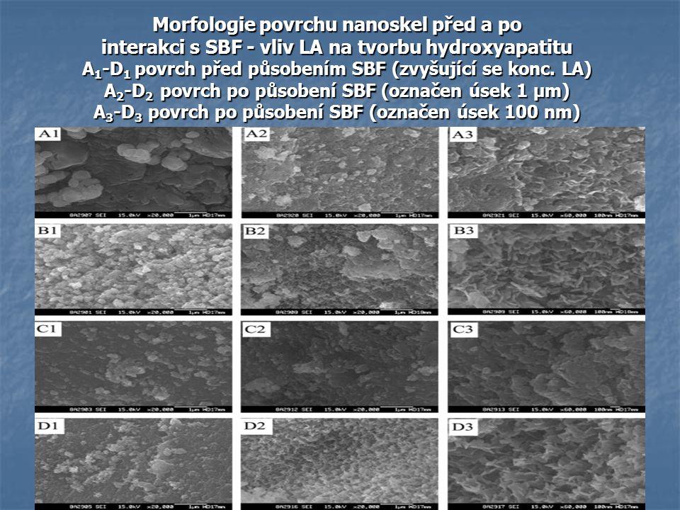 Morfologie povrchu nanoskel před a po interakci s SBF - vliv LA na tvorbu hydroxyapatitu A1-D1 povrch před působením SBF (zvyšující se konc.
