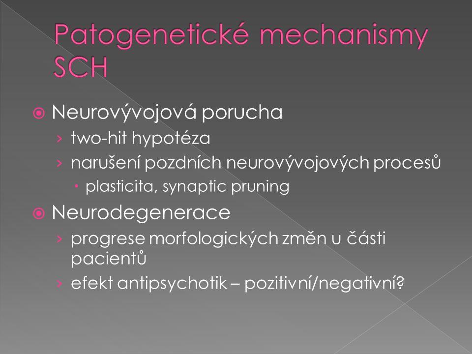 Patogenetické mechanismy SCH