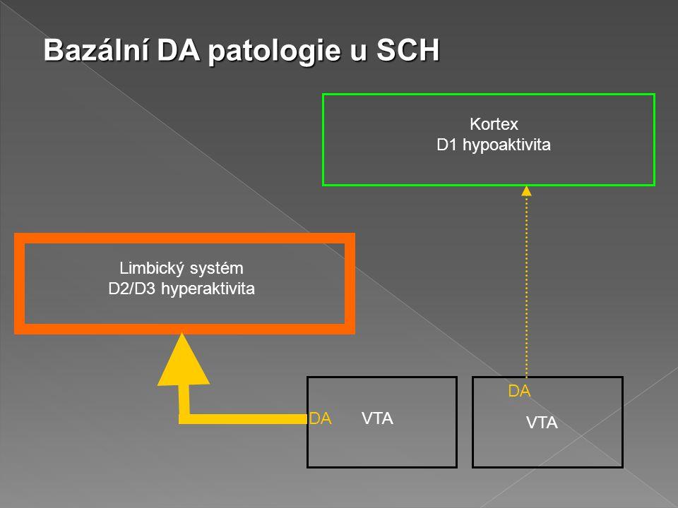 Bazální DA patologie u SCH