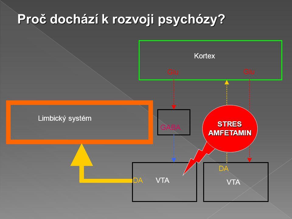 Proč dochází k rozvoji psychózy