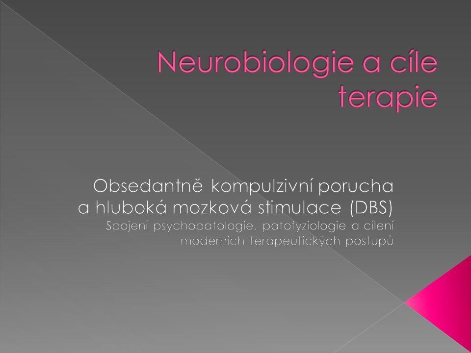 Neurobiologie a cíle terapie