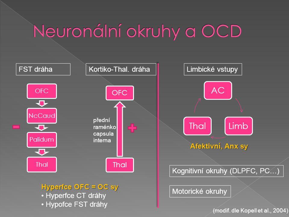 Neuronální okruhy a OCD