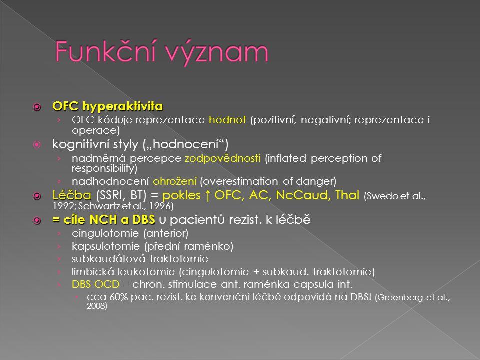 """Funkční význam OFC hyperaktivita kognitivní styly (""""hodnocení )"""