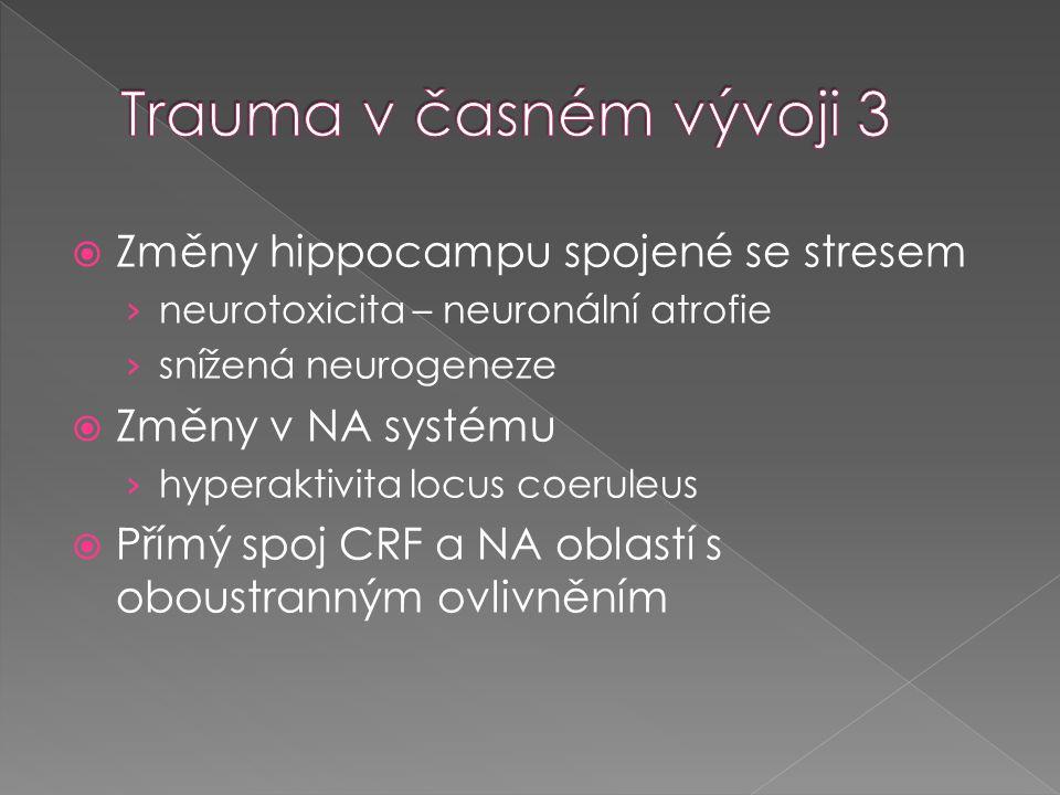 Trauma v časném vývoji 3 Změny hippocampu spojené se stresem