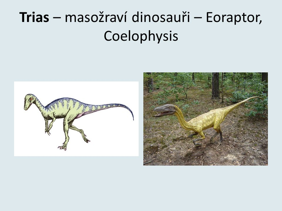 Trias – masožraví dinosauři – Eoraptor, Coelophysis