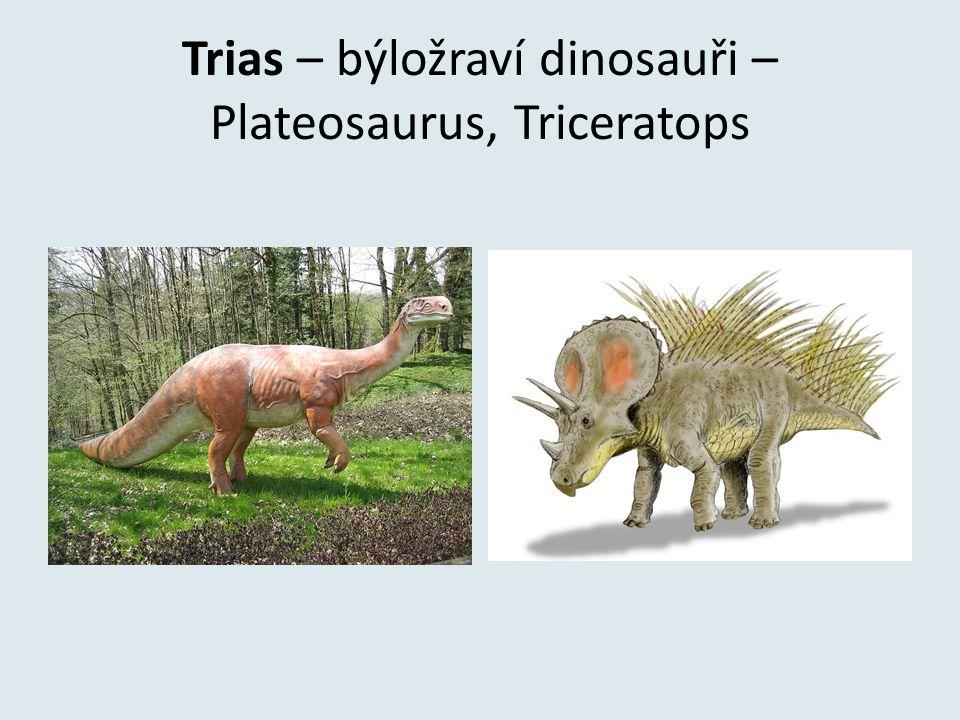 Trias – býložraví dinosauři – Plateosaurus, Triceratops