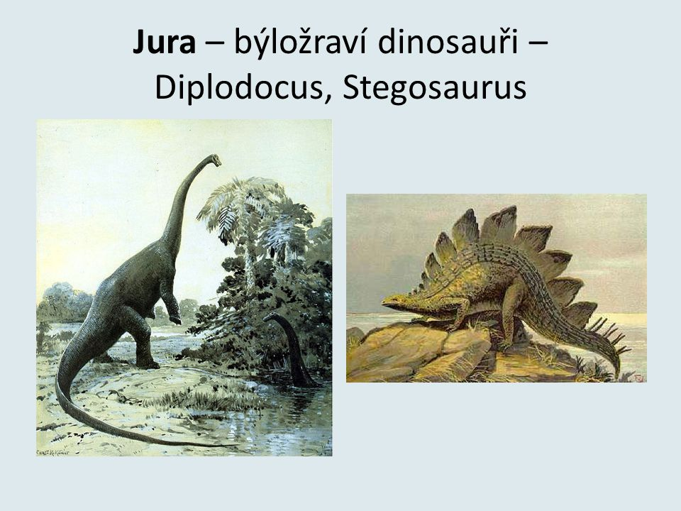 Jura – býložraví dinosauři – Diplodocus, Stegosaurus