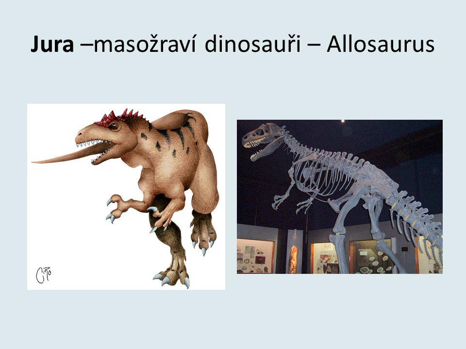 Jura –masožraví dinosauři – Allosaurus