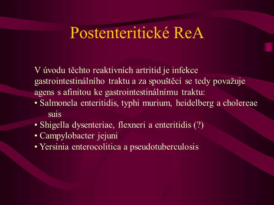 Postenteritické ReA V úvodu těchto reaktivních artritid je infekce