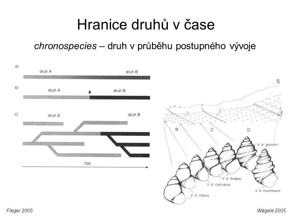 Hranice druhů v čase chronospecies – druh v průběhu postupného vývoje