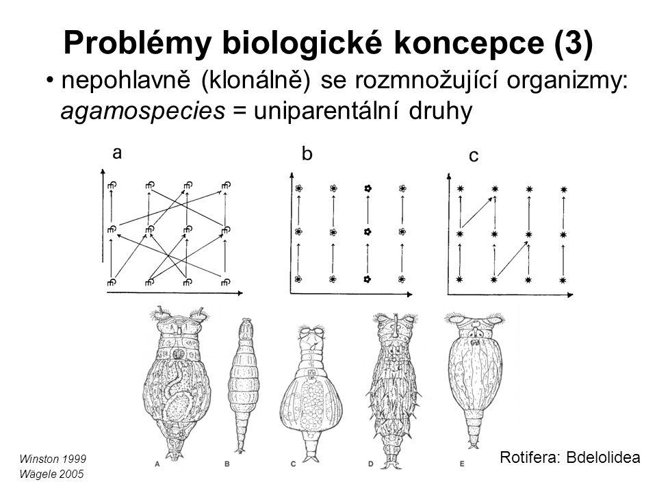Problémy biologické koncepce (3)