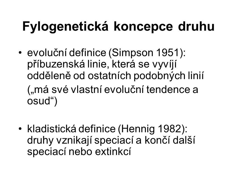 Fylogenetická koncepce druhu