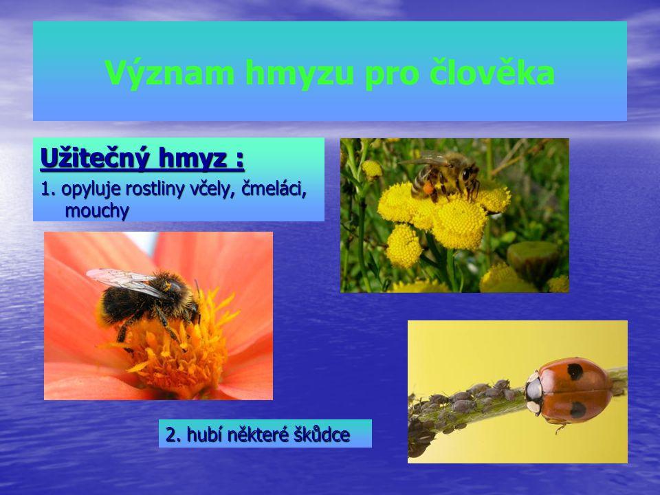 Význam hmyzu pro člověka