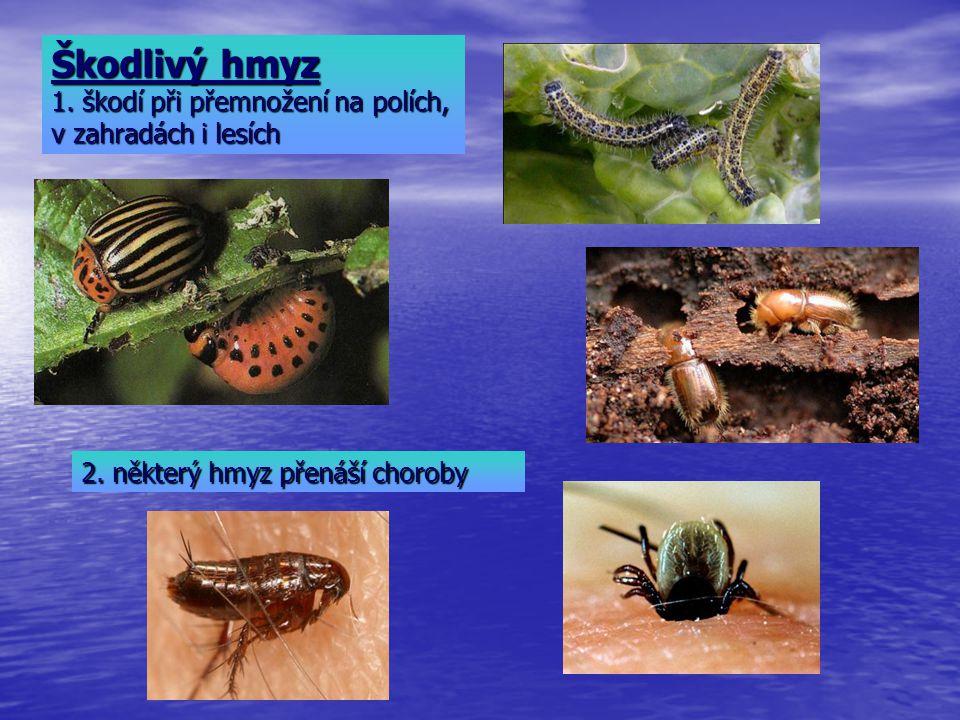 Škodlivý hmyz 1. škodí při přemnožení na polích, v zahradách i lesích