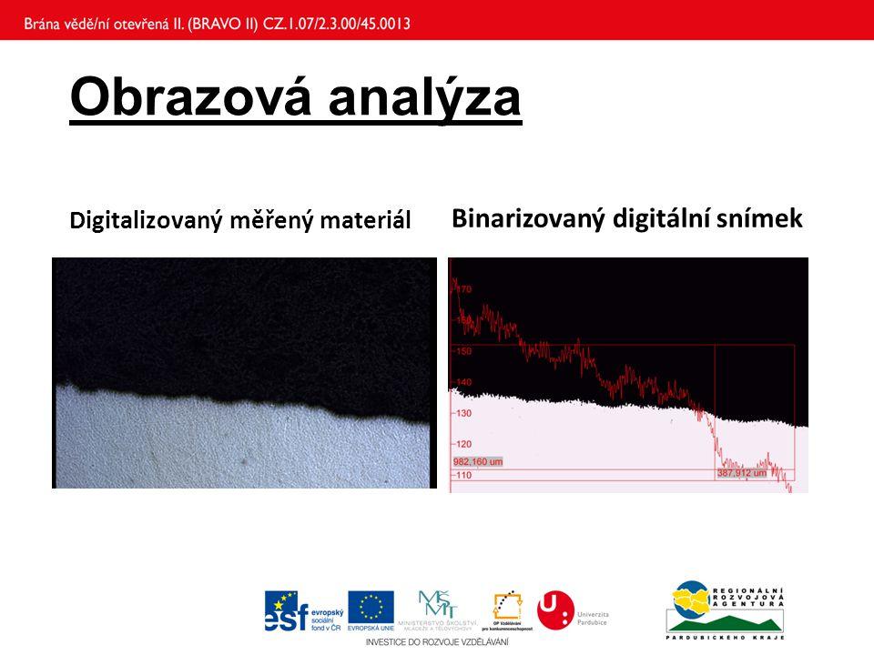 Obrazová analýza Binarizovaný digitální snímek