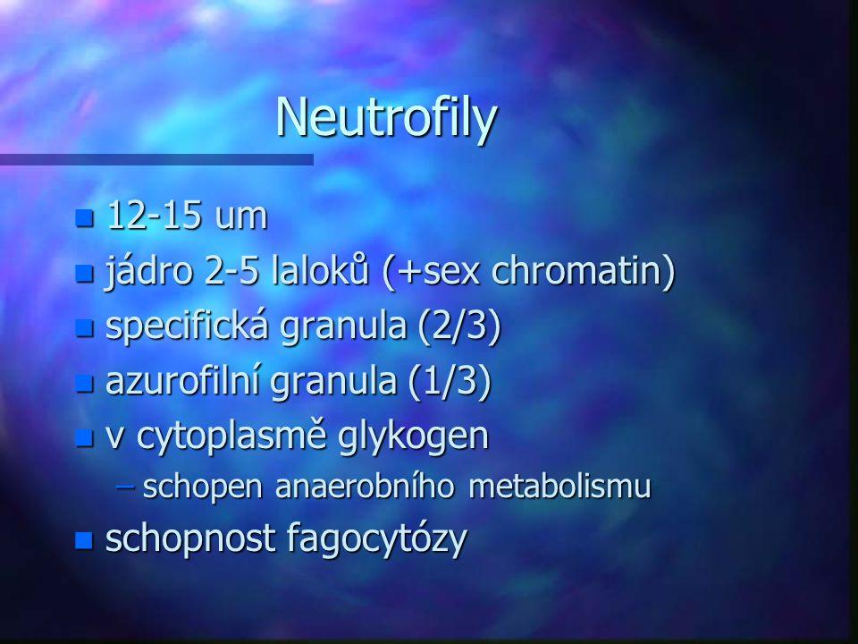 Neutrofily 12-15 um jádro 2-5 laloků (+sex chromatin)