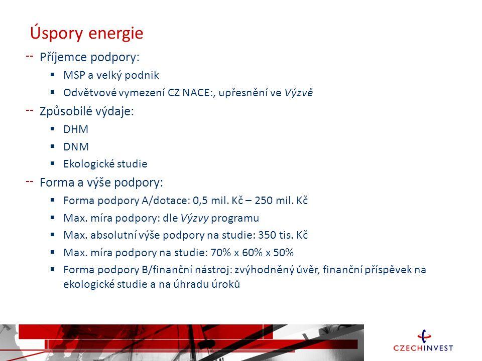 Úspory energie Příjemce podpory: Způsobilé výdaje: