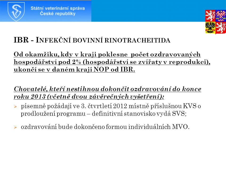 IBR - Infekční bovinní rinotracheitida