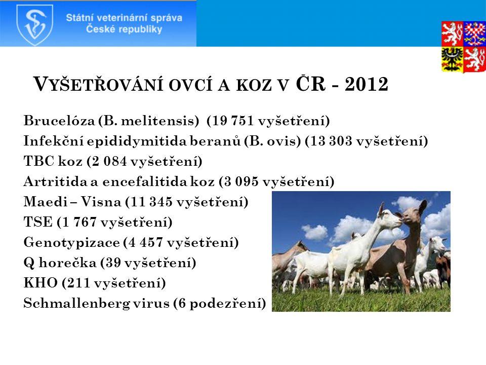 Vyšetřování ovcí a koz v ČR - 2012