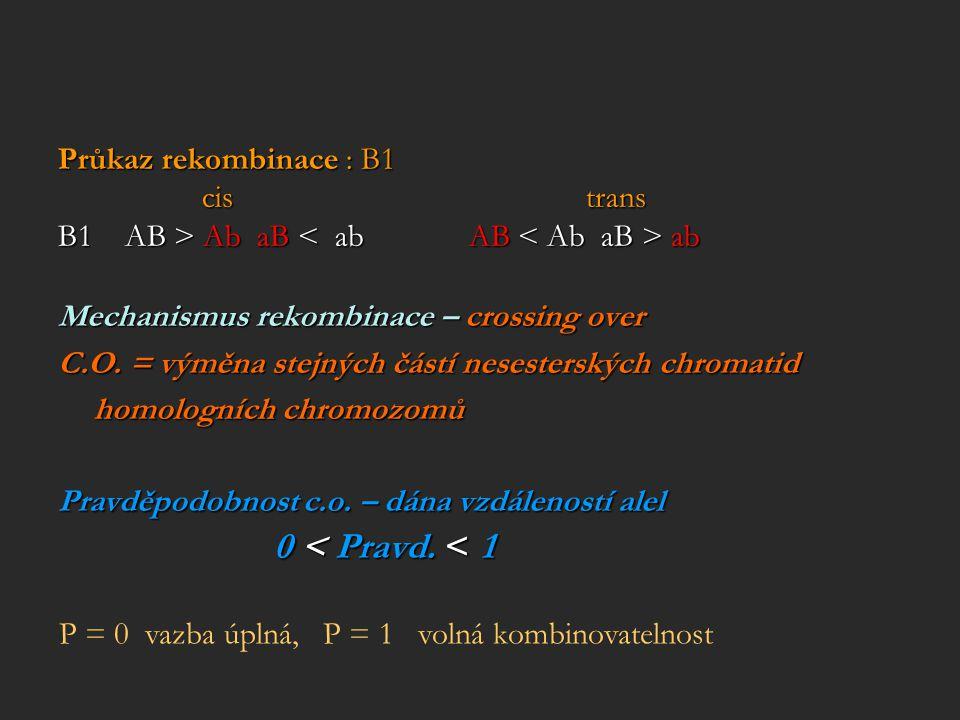 Průkaz rekombinace : B1 cis trans. B1 AB > Ab aB < ab AB < Ab aB > ab.