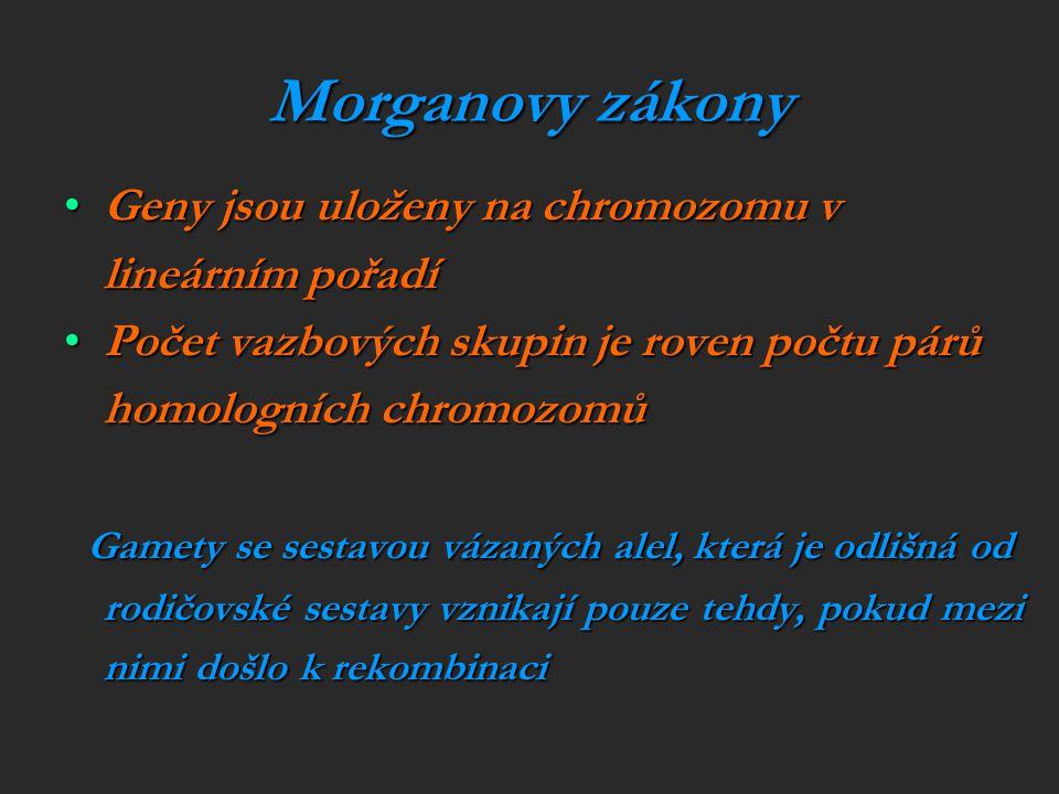 Morganovy zákony Geny jsou uloženy na chromozomu v lineárním pořadí