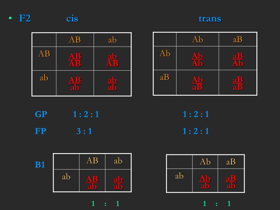 F2 cis trans AB ab Ab aB GP 1 : 2 : 1 1 : 2 : 1 FP 3 : 1 1 : 2 : 1 B1