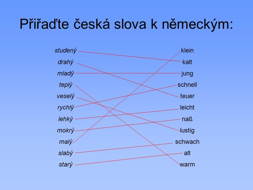 Přiřaďte česká slova k německým: