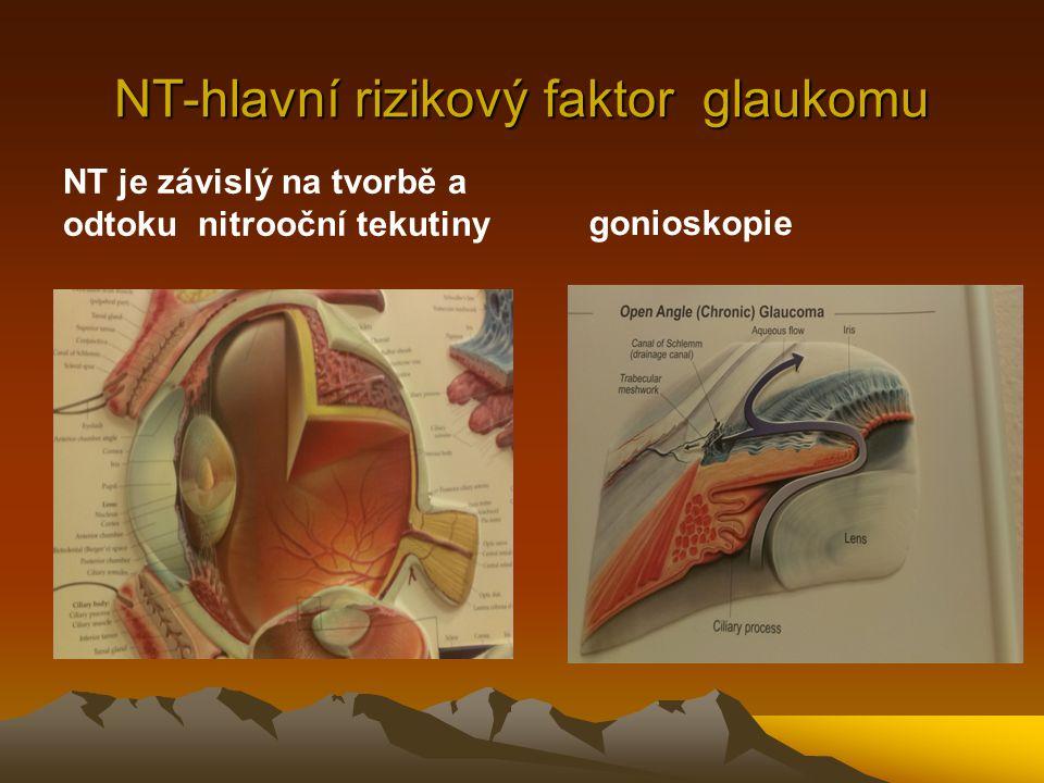 NT-hlavní rizikový faktor glaukomu