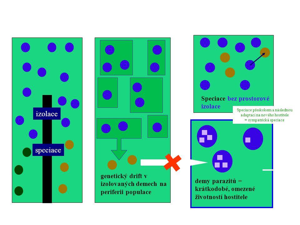 alopatrická speciace sympatrická speciace izolace speciace
