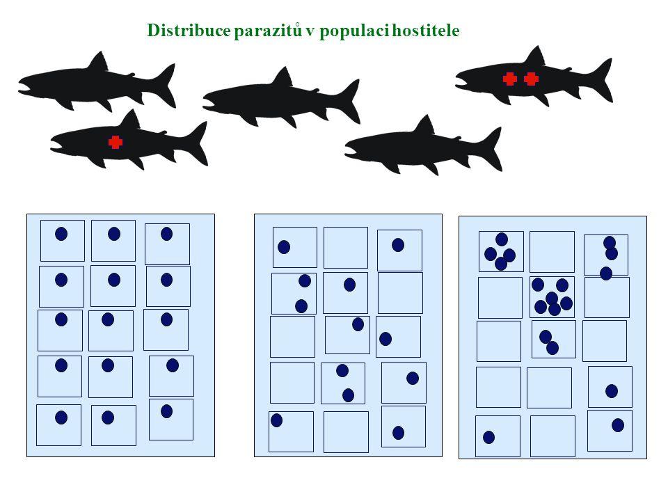 Distribuce parazitů v populaci hostitele