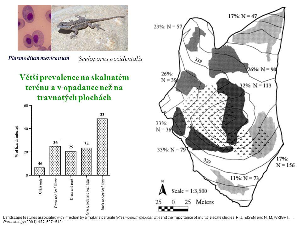 Plasmodium mexicanum Sceloporus occidentalis. Větší prevalence na skalnatém terénu a v opadance než na travnatých plochách.