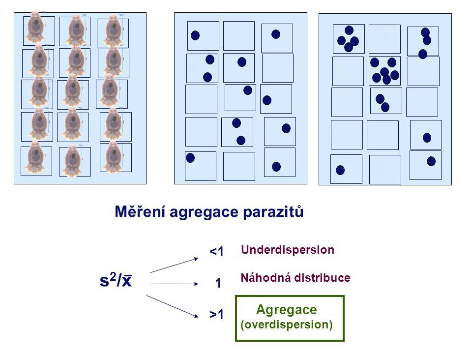 Měření agregace parazitů Agregace (overdispersion)