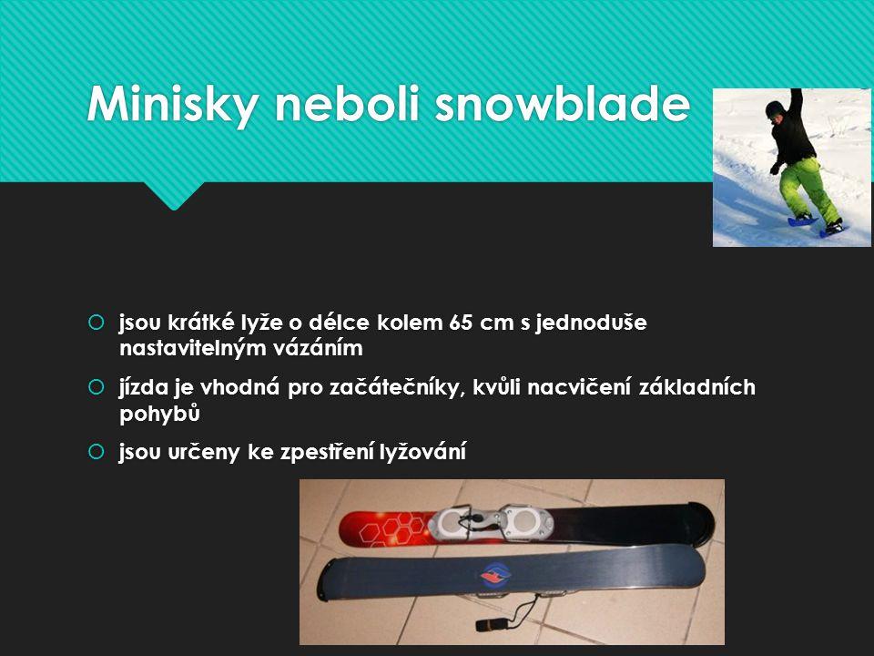 Minisky neboli snowblade
